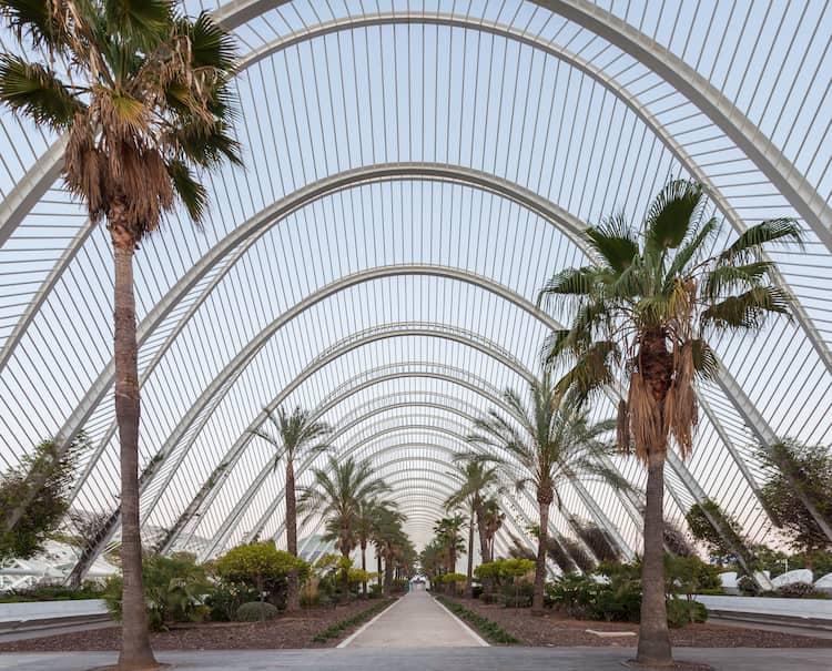 L' umbracle - Ciudad de las Artes y de las Ciencias CAC